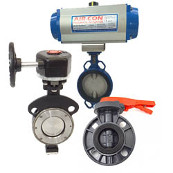 SS Butterfly Valves