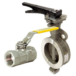 Valves for Process Applications