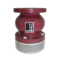 Titan FV 50-DI Ductile Iron Foot Valve Assembly